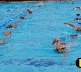 swimming men elite